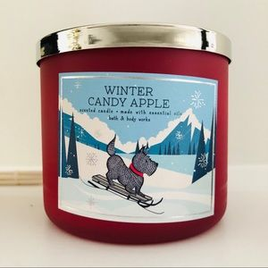Bath and Body Works Winter Candy Apple Candy